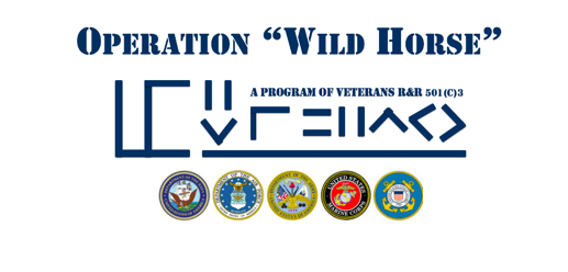Operation Wild Horse Partners with WDAA